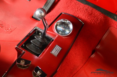 Chevelle Malibu 1967 (26).JPG