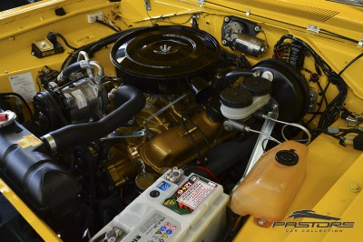 Dodge Charger RT - 1976 (24).JPG
