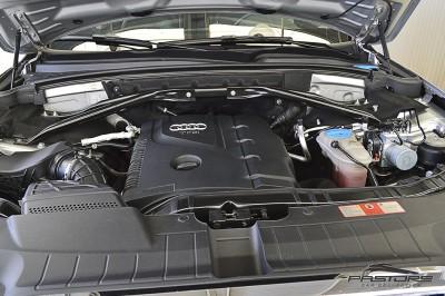 Audi Q5 2010 (9).JPG