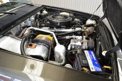 Chevrolet Caravan  Diplomata 1990 (6).JPG