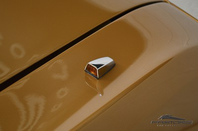 Dodge Charger RT 1977 (37).JPG