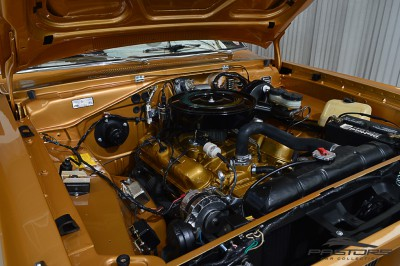 Dodge Charger RT 1977 (12).JPG