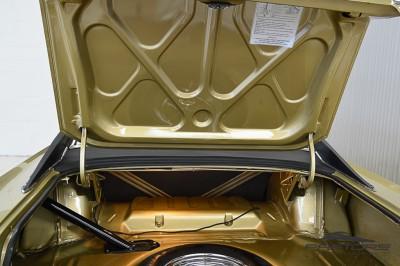 Dodge Charger 1972 (21).JPG