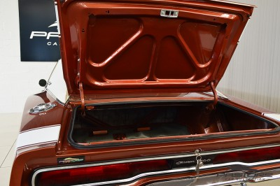 Dodge Charger 500 1970 (31).JPG