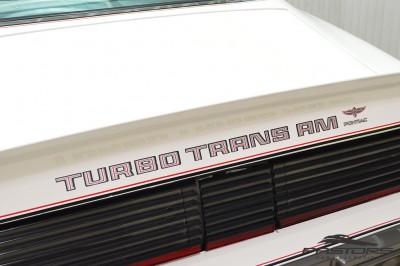 Pontiac Turbo Trans Am 1980 (32).JPG