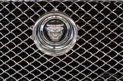 Jaguar XF (10).JPG