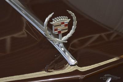 Cadillac Sedan De Ville 1973 (10).JPG
