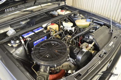 VW Passat GTS Pointer - 1989 (6).JPG