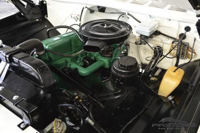 Chevrolet C10 - 1978 (12).JPG